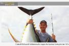 Самый большой пойманный в водах Австралии тунец весом 142 кг