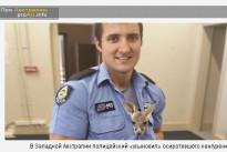 В Западной Австралии полицейский «усыновил» осиротевшего кенгуренка