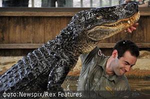 Любовь крокодила