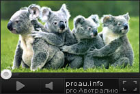 Австралия. Промо ролик