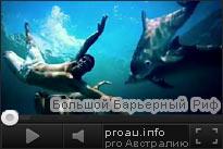 Большой Барьерный Риф. Подводный мир.
