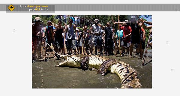 Охота на крокодилов