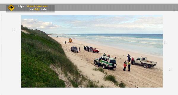 Австралийский серфер погиб в результате нападения акулы