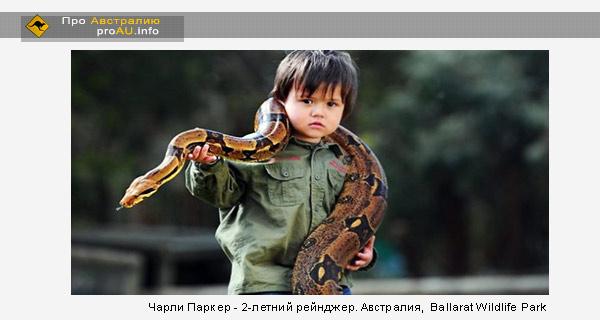В Австралии смотрителем за змеями стал 2-х летний мальчик