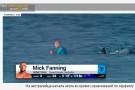 На австралийца напала акула во время соревнований по сёрфингу. Видео