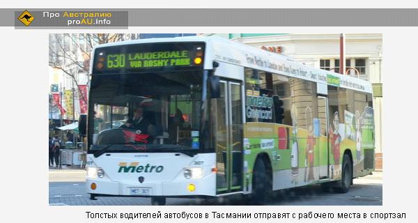 В Тасмании толстых водителей автобусов отправят с рабочего места в спортзал