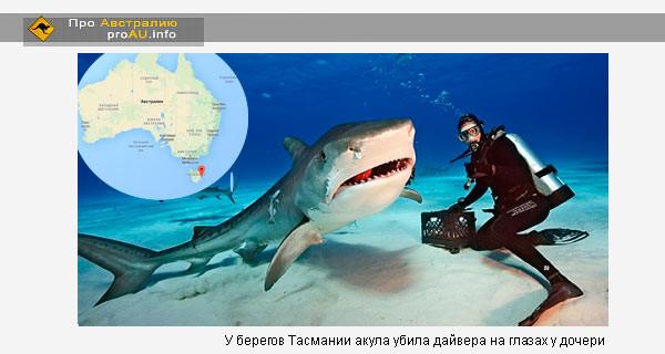 У берегов Тасмании акула убила дайвера на глазах у дочери