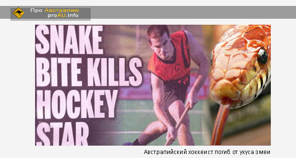 Австралийский хоккеист погиб от укуса змеи