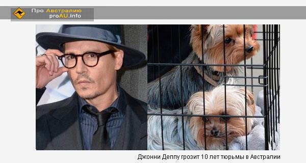 Джонни Деппу грозит 10 лет тюрьмы в Австралии