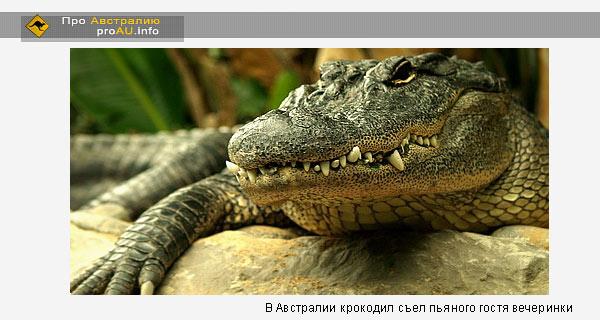 В Австралии крокодил съел пьяного гостя вечеринки
