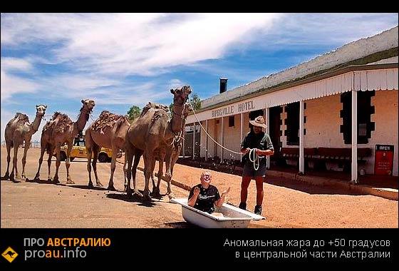 Аномальная жара до +50 градусов в центральной части Австралии