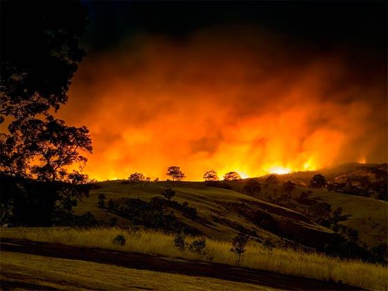 Пожары охватили штаты Виктория и Южная Австралия.