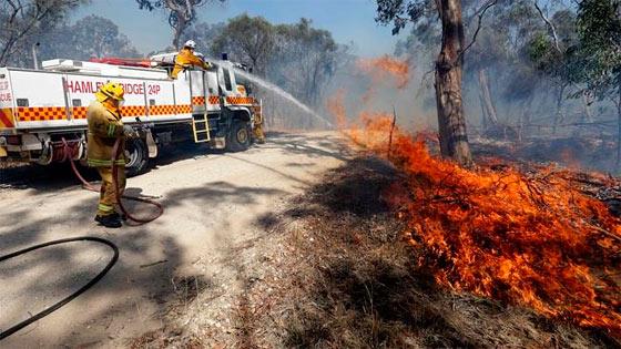 Пожары охватили штаты Виктория и Южная Австралия