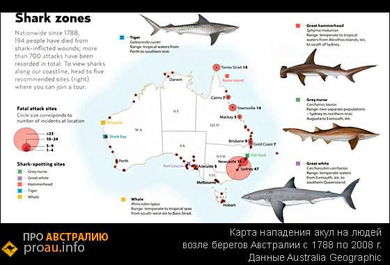 карта нападения акул на людей возле берегов Австралии